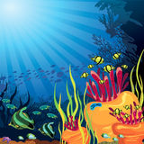 Colored coral reef and fish. Underwater life - beautifull coral reef with fish on a blue sea background Stock Photography