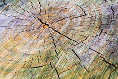 Colored cracked wooden texture with circles. Soft selective focus and shallow depth of field Royalty Free Stock Images