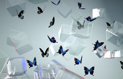 Colored cube butterfly Royalty Free Stock Images
