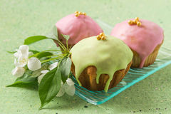 Colored cupcakes and flowers of apple Royalty Free Stock Images