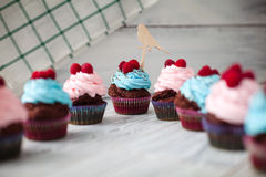 Colored Cupcakes sweet Stock Image