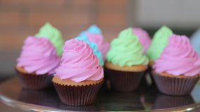 Colored cupcakes on a tray