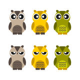 Colored cute owls set of flat icon Stock Images