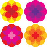 Colored daisy flowers royalty free illustration