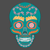 Colored Day of The Dead Sugar Skull with ornament. Vector illustration. Stock Photos