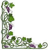 Colored decorative frame Royalty Free Stock Image