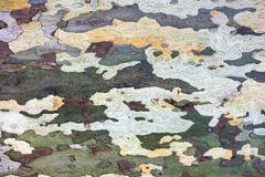 Colored decorative tree bark as a background Stock Image