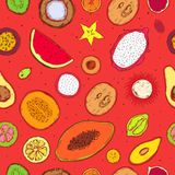 Colored Doodle Exotic Fruits Seamless Pattern. With fresh tropical products on bright red background vector illustration Royalty Free Stock Photo