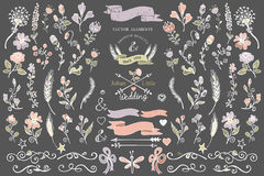 Colored Doodles borders floral decor elements set Stock Photos