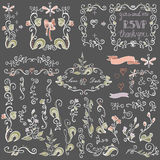 Colored Doodles floral decor set.Borders,elements Stock Photos