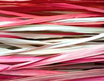 Colored dried palm leaves Royalty Free Stock Photos