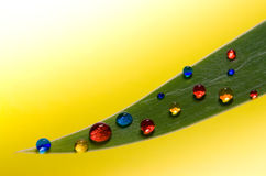 Colored drops on a green leaf Stock Image