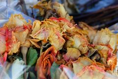 Colored dry wilted flowers roses in a bouquet in cellophane in a pile of garbage. Colored dry wilted buds flowers of roses in a bouquet in cellophane in a pile stock images