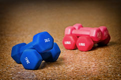 Colored dumbbells. Waiting for active Royalty Free Stock Photo