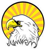 Colored eagle vector Stock Photography