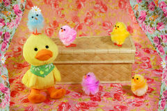 Colored Easter Chicks & Duckling Stock Photography