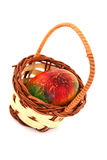 Colored easter egg in basket Royalty Free Stock Photo