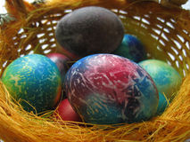 Colored Easter eggs Royalty Free Stock Image