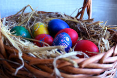 Colored Easter eggs in the basket.  stock image