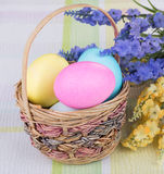 Colored Easter Eggs in a Basket Royalty Free Stock Image