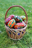 Colored easter eggs in basket Stock Photos