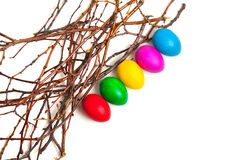 Colored Easter eggs from the branches. On a white background Royalty Free Stock Images