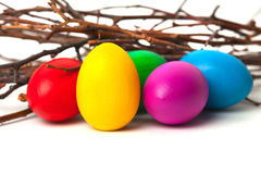 Colored Easter eggs from the branches. On a white background Stock Images