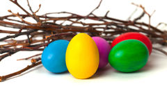 Colored Easter eggs from the branches. On a white background Royalty Free Stock Photography