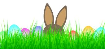 Colored easter eggs and easter bunny in green grass. Colored easter eggs and easter bunny in lush green grass Royalty Free Stock Photo