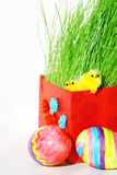 Colored easter eggs and chickens in green grass. With white background stock photo