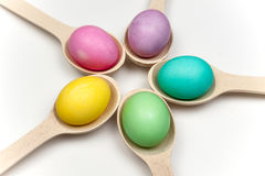 Colored easter eggs in circle isolated on white Royalty Free Stock Photo