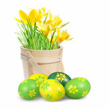 Colored Easter eggs and crocuses Royalty Free Stock Images