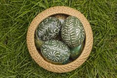 Colored Easter Eggs. Dark Green Easter Eggs in Wicker Basket in grass stock image