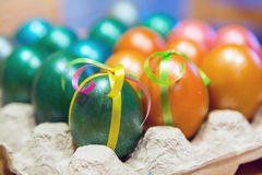 Colored Easter eggs in egg carton holder. Brightly colored decorated Easter eggs in egg carton holder, holiday background Stock Photography