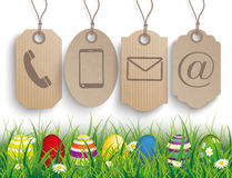 Colored Easter Eggs Grass Carton Price Stickers Contact Royalty Free Stock Photos