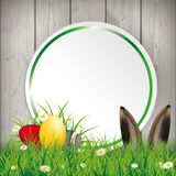 Colored Easter Eggs Grass Circle Banner Hare Stock Photography