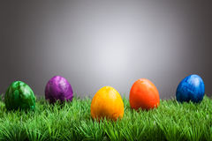 Colored easter eggs in grass, gray background royalty free stock photo