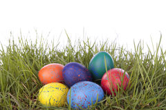 Colored easter  eggs on grass over white Royalty Free Stock Images