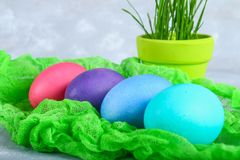 Colored Easter eggs on a green gauze on a gray concrete background. Colored Easter eggs on a green gauze on a gray concrete background Stock Images