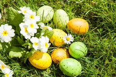 Colored Easter eggs hidden in flowers and grass Royalty Free Stock Images