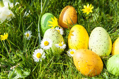 Colored Easter eggs hidden in flowers and grass Stock Image