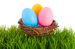 Colored Easter eggs in a nest. Royalty Free Stock Images