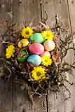 Colored easter eggs in nest Stock Image