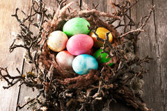 Colored easter eggs in nest Stock Photography