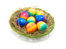 Colored Easter eggs in the nest Royalty Free Stock Photography