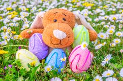 Colored easter eggs and puppet Royalty Free Stock Photo