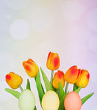 Colored Easter Eggs and Tulips Royalty Free Stock Images