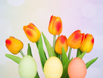 Colored Easter Eggs and Tulips Royalty Free Stock Image