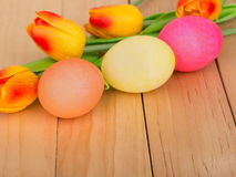 Colored Easter Eggs and Tulips Stock Photography