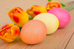 Colored Easter Eggs and Tulips Royalty Free Stock Photography